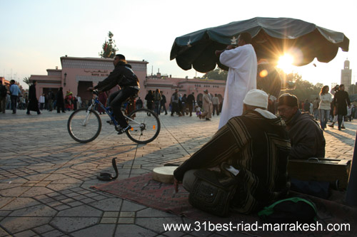 Photos of Snake Charmers in Djemaa el-Fna Square in Marrakech