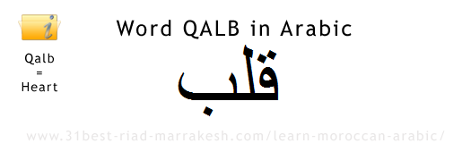 Word HEART - QALB in Arabic, Learn How to Write Arabic