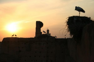 Sunset at El Badi Palace Marrakech